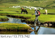 Купить «female wanderer with nordc walking stick crossing a meltwater inlet of Lac de Nino , France, Corsica», фото № 13773742, снято 24 июня 2019 г. (c) age Fotostock / Фотобанк Лори