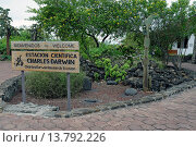 Купить «entrance to Charles Darwin Research Station, Ecuador, Galapagos Islands, Santa Cruz», фото № 13792226, снято 22 октября 2018 г. (c) age Fotostock / Фотобанк Лори