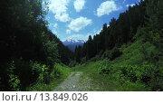 Купить «Дорожка среди альпийских лугов», видеоролик № 13849026, снято 22 ноября 2015 г. (c) Потийко Сергей / Фотобанк Лори