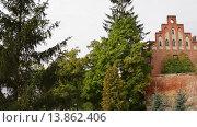 Купить «Teutonic castle in Sztum, Poland», видеоролик № 13862406, снято 15 октября 2015 г. (c) BestPhotoStudio / Фотобанк Лори