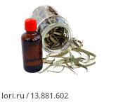 Купить «Пузырёк с эвкалиптовое маслом и сухие листья эвкалипта в банке», эксклюзивное фото № 13881602, снято 8 ноября 2015 г. (c) Blekcat / Фотобанк Лори