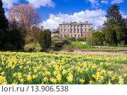 Купить «Howick Hall in Northumberland, the home of Earl Grey.», фото № 13906538, снято 18 февраля 2019 г. (c) age Fotostock / Фотобанк Лори