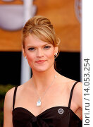 Missi Pyle - Los Angeles/California/United States - 14TH ANNUAL SCREEN ACTORS GUILD AWARDS: ARRIVALS (2008 год). Редакционное фото, фотограф visual/pictureperfect / age Fotostock / Фотобанк Лори