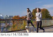 Купить «happy couple with dog running outdoors», фото № 14158966, снято 17 октября 2015 г. (c) Syda Productions / Фотобанк Лори