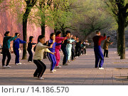 Купить «CHINA, BEIJING, PEOPLE DOING TAI CHI AT WALL OF FORBIDDEN CITY.», фото № 14186570, снято 18 марта 2018 г. (c) age Fotostock / Фотобанк Лори
