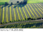 Купить «aerial view to agricultural area with fields, grasslands and hedges from the air in spring, Belgium», фото № 14203682, снято 20 августа 2018 г. (c) age Fotostock / Фотобанк Лори