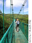 Купить «A tourist and guide on One of the hanging bridges suspension bridge over the cloud forest canopy at Monteverde Cloud Forest, Costa Rica, Central America.», фото № 14225742, снято 18 октября 2018 г. (c) age Fotostock / Фотобанк Лори