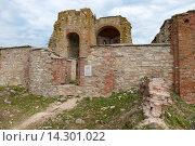 Купить «Руины церкви Благовещения на Рюриковом городище, Великий Новгород», фото № 14301022, снято 8 августа 2015 г. (c) Pukhov K / Фотобанк Лори