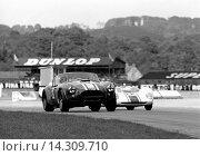 Купить «Goodwood. No23 Jack Sears' Willment Cobra, No 8 Denny Hulme's Brabham BT8 Climax in the Goodwood RAC TT, England 29th August 1964.», фото № 14309710, снято 7 ноября 2013 г. (c) age Fotostock / Фотобанк Лори