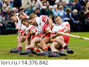 Купить «Men compete in Tug O' War contest at the Braemar Games Highland Gathering, Scotland, UK», фото № 14376842, снято 24 апреля 2018 г. (c) age Fotostock / Фотобанк Лори