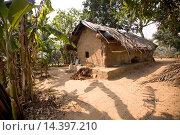 Купить «Tribal hut, Bhuvaneshwar, Odisha, India», фото № 14397210, снято 29 февраля 2012 г. (c) age Fotostock / Фотобанк Лори
