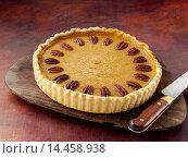 Купить «Butternut squash pie», фото № 14458938, снято 9 февраля 2014 г. (c) age Fotostock / Фотобанк Лори