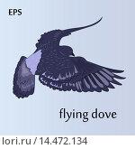 Купить «Голубь», иллюстрация № 14472134 (c) Музыка Анна / Фотобанк Лори