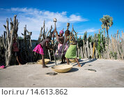 African Women With Mortars And Pestles, Ondangwa, Namibia. Редакционное фото, фотограф Eric Lafforgue / age Fotostock / Фотобанк Лори