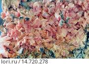 Inesite. Стоковое фото, фотограф R. Koenig / age Fotostock / Фотобанк Лори