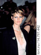Купить «Stella Tennant at Metropolitan Museum of Art Goddess Gala, NY 4/28/2003, by CJ Contino», фото № 14797442, снято 13 декабря 2002 г. (c) age Fotostock / Фотобанк Лори
