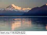 Mount Cook and Lake Pukaki at sunrise, Mount Cook National Park, UNESCO World Heritage Site, Canterbury region, South Island, New Zealand, Pacific. Стоковое фото, фотограф Stuart Black / age Fotostock / Фотобанк Лори