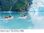 Купить «Young adults sea kayaking in Harriman Fjord, Prince William Sound, Southcentral Alaska», фото № 15012146, снято 16 февраля 2019 г. (c) age Fotostock / Фотобанк Лори