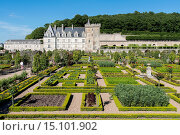 Купить «Gardens and Château de Villandry. Its famous Renaissance gardens include a water garden, ornamental flower gardens, and vegetable gardens. Villandry, Indre-et-Loire, Loire Valley, France, Europe.», фото № 15101902, снято 19 июня 2014 г. (c) age Fotostock / Фотобанк Лори