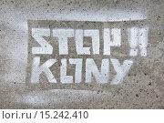 Купить «Kony», фото № 15242410, снято 16 июля 2019 г. (c) age Fotostock / Фотобанк Лори