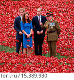 Купить «Princes William and Harry, accompanied by Catherine Duchess of Cambridge visit the Poppy installation at the Tower of London Featuring: Prince William...», фото № 15389930, снято 5 августа 2014 г. (c) age Fotostock / Фотобанк Лори