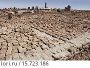 Купить «Древняя каменная дорога в Узбекистане», фото № 15723186, снято 20 сентября 2007 г. (c) Elizaveta Kharicheva / Фотобанк Лори