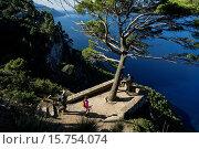 Pi´s viewpoint, -Mirador Es Niu Des Voltor- Valldemossa, Tramuntana Mountains, Majorca, Balearic Islands, Spain, Europe. Стоковое фото, фотограф Tolo Balaguer / age Fotostock / Фотобанк Лори
