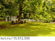 Купить «A white picket fence and arbor gate with a path, boxwoods and a large pecan tree.Georgia USA», фото № 15912590, снято 7 июня 2014 г. (c) age Fotostock / Фотобанк Лори