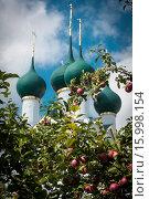 Церковный яблоневый сад (2015 год). Стоковое фото, фотограф Volkova Natalia / Фотобанк Лори
