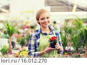 Купить «happy woman holding flowers in greenhouse», фото № 16012270, снято 25 февраля 2015 г. (c) Syda Productions / Фотобанк Лори