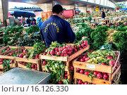 Купить «Town Leopoldina, Ceagesp, Capital, São Paulo, Brazil.», фото № 16126330, снято 2 сентября 2014 г. (c) age Fotostock / Фотобанк Лори