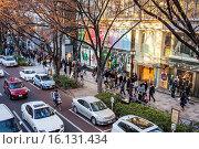 Купить «Omotesando Avenue, Tokyo, Japan.», фото № 16131434, снято 18 июня 2019 г. (c) age Fotostock / Фотобанк Лори