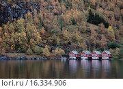 Маленькие домики на берегу фьорда в Норвегии (2009 год). Стоковое фото, фотограф Ирина Океанова / Фотобанк Лори
