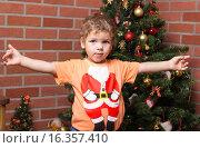 Мальчик и елка. Стоковое фото, фотограф Алексей Чубов / Фотобанк Лори