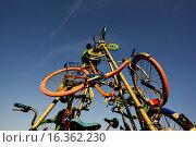 Купить «Bicycle installation, Burgenland, Austria, Neusiedlersee Seewinkel.», фото № 16362230, снято 18 мая 2014 г. (c) age Fotostock / Фотобанк Лори