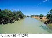 Купить «Environment disaster: blue-green algae infests Darling River. Australia», фото № 16441370, снято 22 мая 2018 г. (c) easy Fotostock / Фотобанк Лори