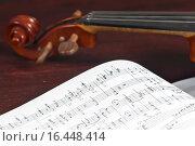 Купить «Музыкальные ноты и скрипка», фото № 16448414, снято 13 апреля 2015 г. (c) Сергей Лабутин / Фотобанк Лори