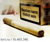 Купить «Wer Lesen Kann Lebt Länger», фото № 16465346, снято 17 июля 2019 г. (c) easy Fotostock / Фотобанк Лори