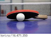 Купить «Tischtennis», фото № 16471350, снято 24 апреля 2019 г. (c) easy Fotostock / Фотобанк Лори