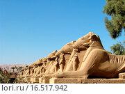 Купить «Widder vorm Karnak_Tempel», фото № 16517942, снято 16 декабря 2007 г. (c) easy Fotostock / Фотобанк Лори