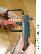 Купить «Zahnmodell eines Kiefers», фото № 16546398, снято 25 февраля 2005 г. (c) easy Fotostock / Фотобанк Лори