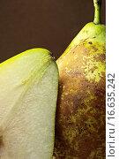 Birne. Стоковое фото, фотограф Andreas Poertner / easy Fotostock / Фотобанк Лори
