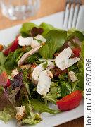 Купить «salad on a plate», фото № 16897086, снято 16 июля 2018 г. (c) easy Fotostock / Фотобанк Лори