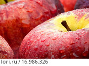 Äpfel nass............ Стоковое фото, фотограф Heiko Eschrich / easy Fotostock / Фотобанк Лори