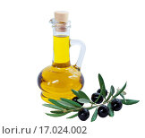 Купить «Glass bottle of premium olive oil and some ripe olives with a branch isolated on white background», фото № 17024002, снято 15 декабря 2015 г. (c) Наталья Волкова / Фотобанк Лори