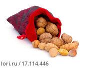 Купить «nuts in sack», фото № 17114446, снято 8 июля 2020 г. (c) easy Fotostock / Фотобанк Лори