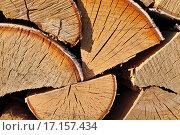 Купить «Поленница из березовых дров», фото № 17157434, снято 28 мая 2012 г. (c) Евгений Суворов / Фотобанк Лори
