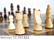 Деревянные шахматы. Стоковое фото, фотограф Оксана Якупова / Фотобанк Лори
