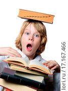 Balancing Act. Стоковое фото, фотограф Suzanne Tucker / easy Fotostock / Фотобанк Лори
