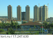 Стамбул. Стоковое фото, фотограф Елена Утенкова / Фотобанк Лори